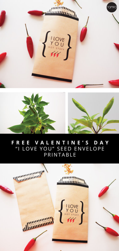 TOMFO-DIY-FREE-ILOVE-YOU-ENVELOPE-PRINTABLEPLANT-FREE-PRINTABLE566