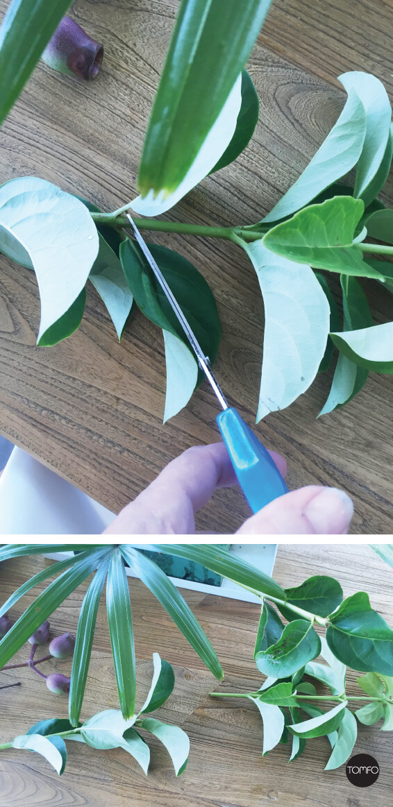 TOMFO-Diy-Flower-Arrangement-cutting