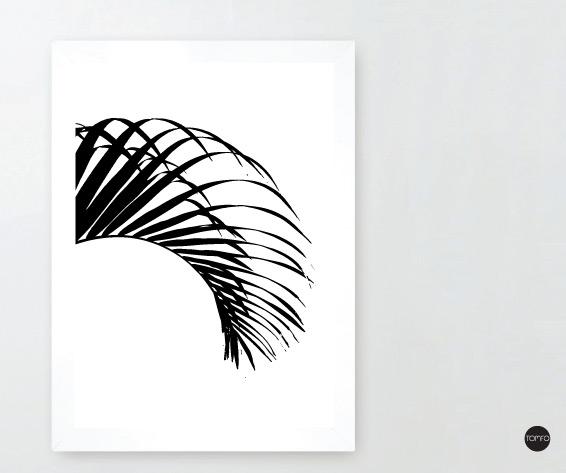 TOMFO-Pats-Palm